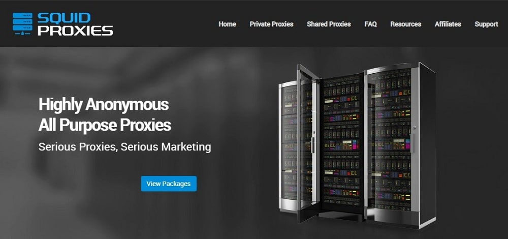 Squid Proxies Home Page